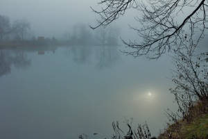 Belleville in the fog: Taken on a foggy morning walk along the Riverside and Bayshore trails