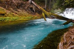 Oregon: Inland