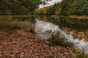 Mayflower Lake